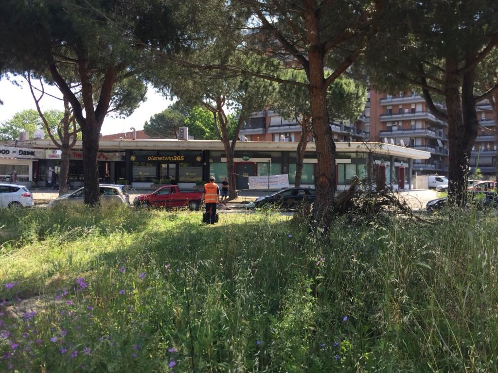 Piazza Hazon 20/05/2018
